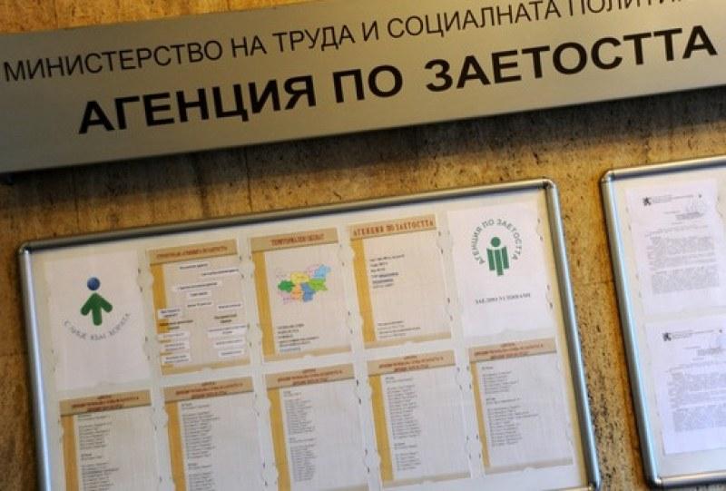 9e98476b915 Нов месец - нова работа! Обявиха новите свободни работни места за Пловдив и  региона