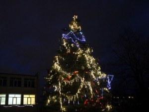 Жива елха грейна в Пловдив! Коледен дух обзе малки и големи СНИМКИ