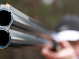 Арестуваха мъж, прострелял овчарско куче край Велинград