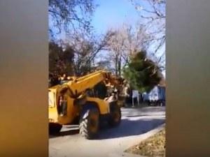 Машини местят дръвчетата от площад Централен в Цар-Симеоновата градина ВИДЕО