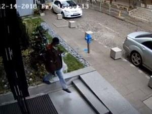 Кой открадна Коледа? ВИДЕО засне как мъж задига еленчето Рудолф от бизнес център