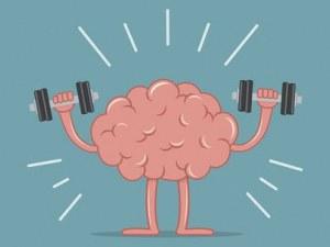 Предпазите мозъка си от остаряване с повече знания