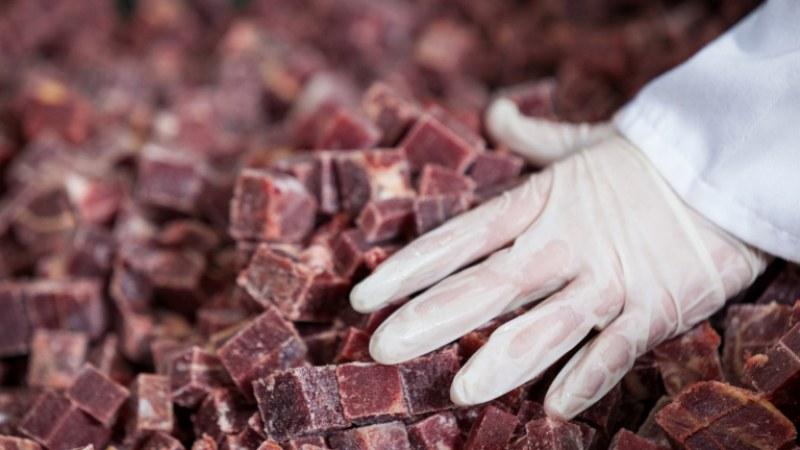 Семейство от Пловдив заболя от трихинелоза, след консумация на заразено месо