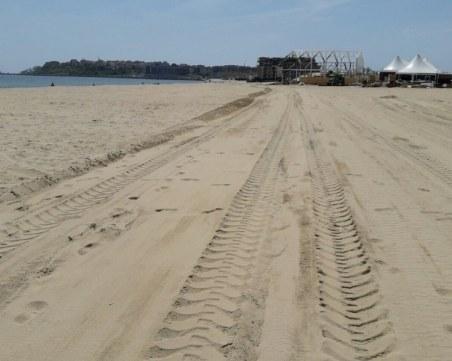 Един век ще е необходим на разрушените дюни, за да се възстановят