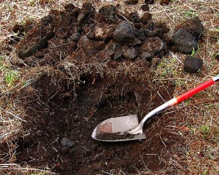 Хванаха иманяр, разкопавал ценности край Свищов