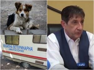 """Кметът на Стамболийски пред TrafficNews за бездомните животни и """"миграцията"""" им по общините ВИДЕО"""