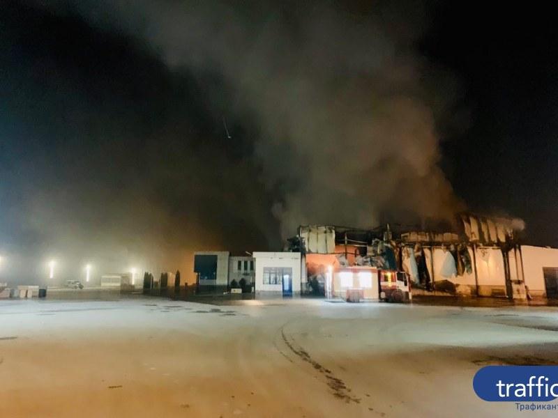 200 прасета – на поляна! Пожарът във Войводиново продължава