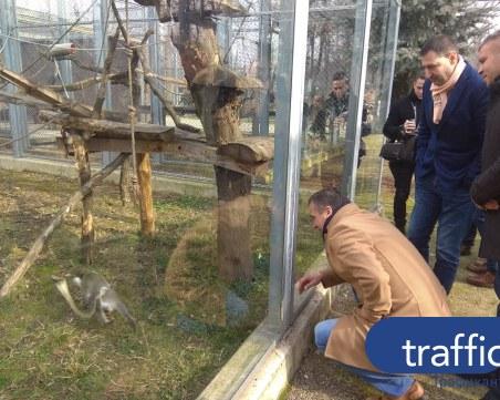 Завършват пловдивския зоопарк за 27 дни! Откриват го през лятото СНИМКИ