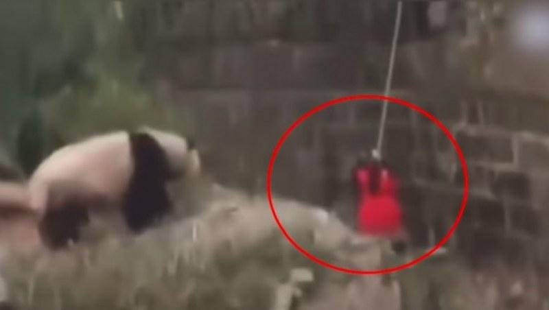 Момиченце падна в клетка на панди в зоопарк! Вижте спасителната операция! ВИДЕО