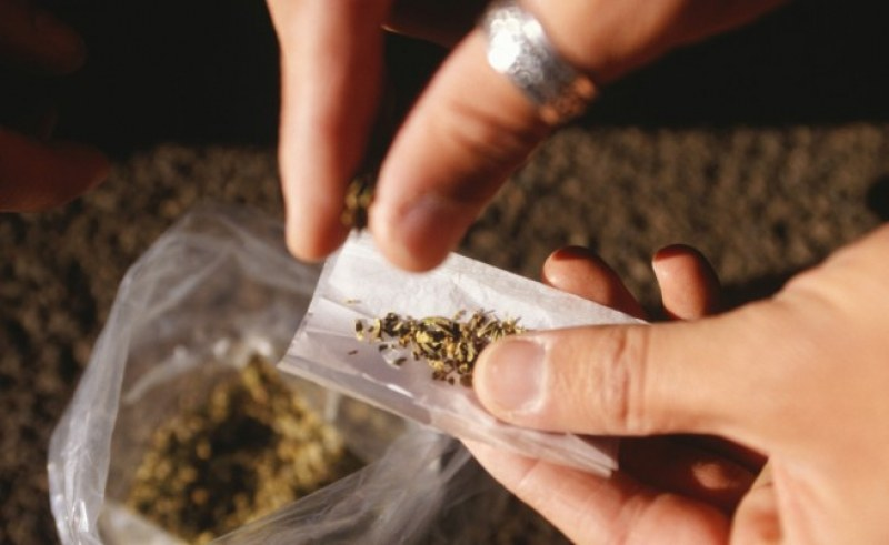 Откриха солидно количество канабис в дома на 20-годишен в Пазарджик