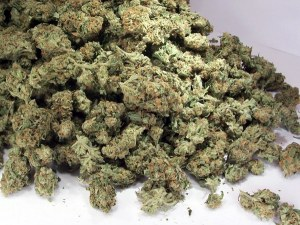 22-годишен, хванат с близо 2 килограма марихуана, остава в ареста