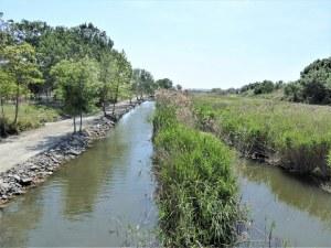 WWF: В България няма нито една река, която да не е замърсена!