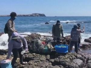 Само за седмица: Събраха 4,5 милиона тона боклуци от островите Галапагос