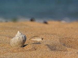 Американски сайт пусна в продажба пясък от плаж във Варна