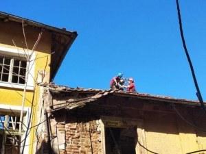 Кучета се покатериха на покрив и... вече седмица са без вода и храна! Алпинисти ги спасиха