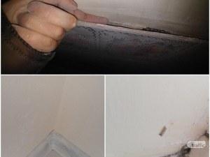 Пловдивчанка: Пишман майстор си остави ръцете в дома ми!, Той: Подавам жалба за тормоз СНИМКИ