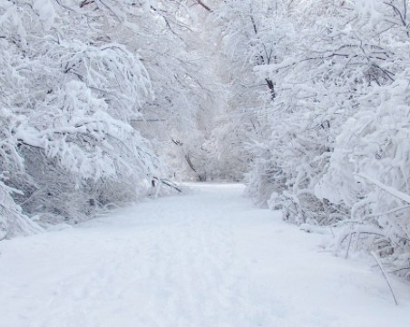 Евакуираха 20 души заради снежни преспи на пътя