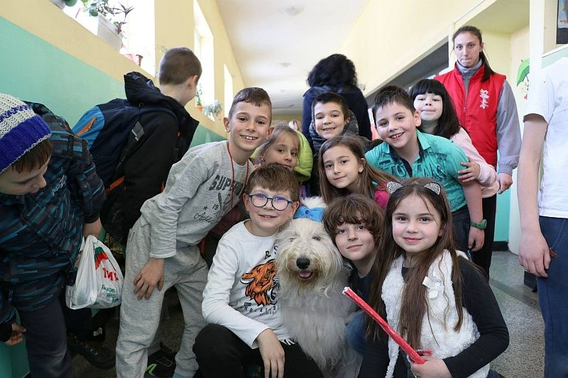 Кучето Мон и доброволци събраха над 11 хил. лв. за онкоболни деца