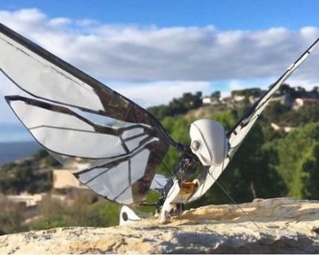 Създадоха робот - пеперуда ВИДЕО
