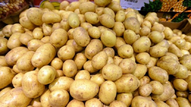 Картофите в Смолянско свършиха! Цените скочиха