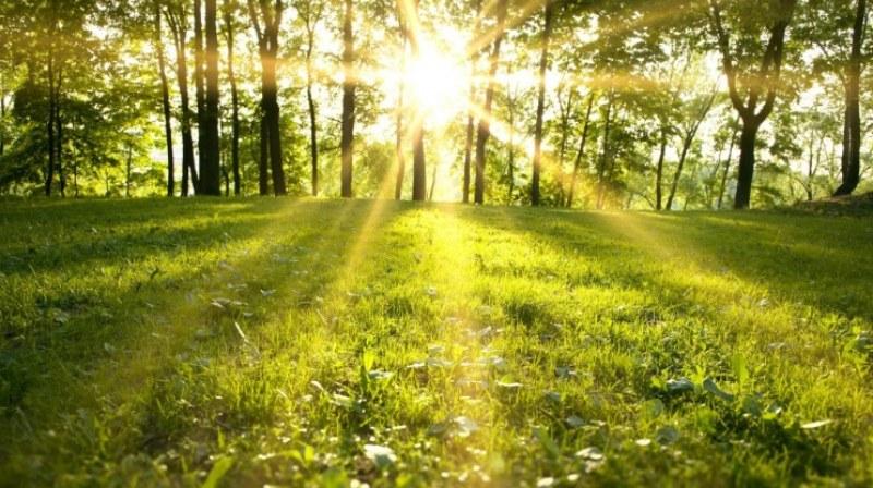 Пролетта се завръща! Идните 10 дни – слънчеви и топли с 20°C