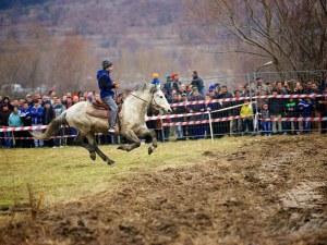 Надбягвания с римски колесници и конкурс за най-грозен кон ни очакват край Пловдив