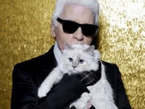 Котката на Лагерфелд с колекция в негова памет СНИМКИ