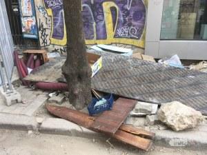 Софийските дървета по софийските ремонти СНИМКИ