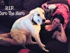 Куче герой спаси стопаните си по време на стрелба СНИМКИ