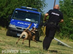 Спецполицаи на четири лапи влизат в акция в Пловдив