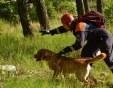 Кучета откриха, а спасители носеха цял час на ръце загубеното момче край Сливен