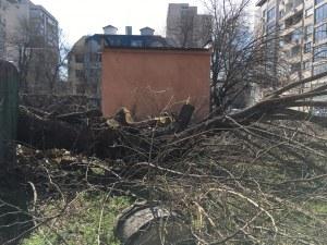 Община Пловдив безсилна срещу застрояването на междублоков терен в центъра на Пловдив ВИДЕО