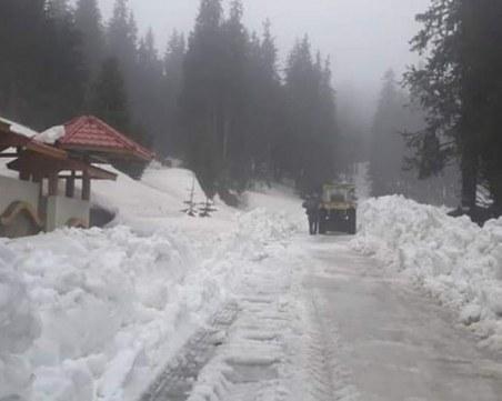 Чистят път към родопско село, затворен от началото на зимата