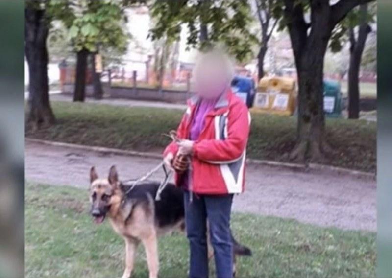 Домашно куче нападна 8-годишно дете на детска площадка във Враца