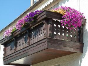 Най-цветната тераса в София я чака награда –800 лева