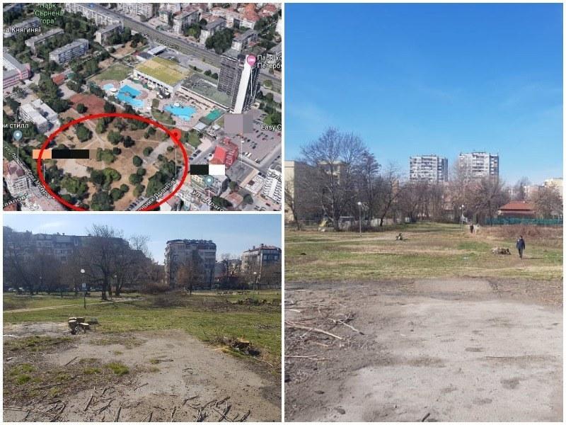 Бойко Борисов се заема с казуса с частния парк от 16 дка в Пловдив