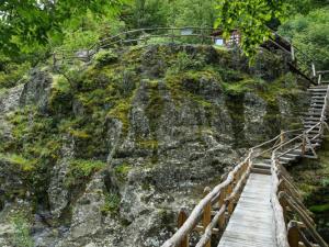 Правят 50 еко кътчета в Пловдив и региона