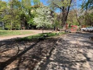 Съседи от столичен квартал с амбиция да направят най-красивата градина