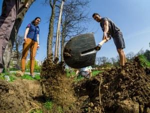 Засаждат 55 нови дръвчета на три места в столицата