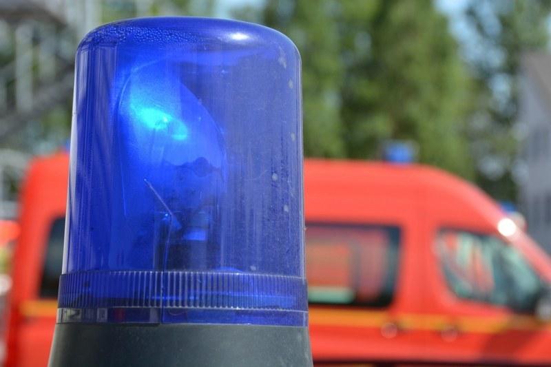 Дърво падна върху главата на работник в  Рогош