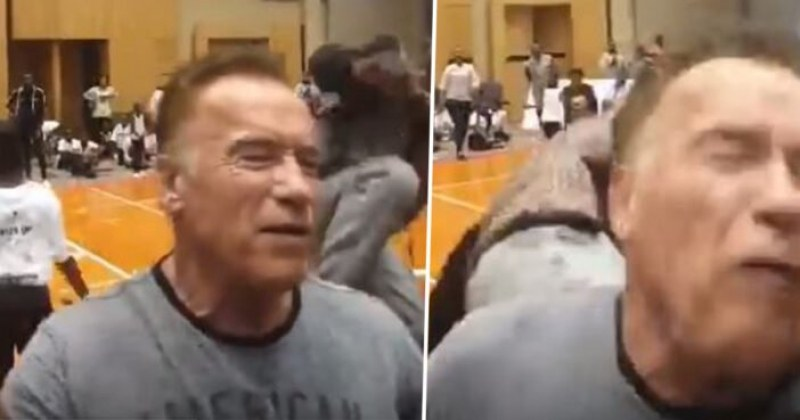 Мъж повали Арнолд Шварценегер с ритник в гърба в ЮАР