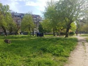 Ексхибиционист стресира майка с дете в Пловдив, оказа яростна съпротива при арест