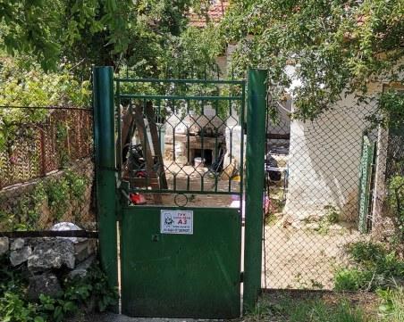 Куче захапало Чане край Горна Василица, но той избягал