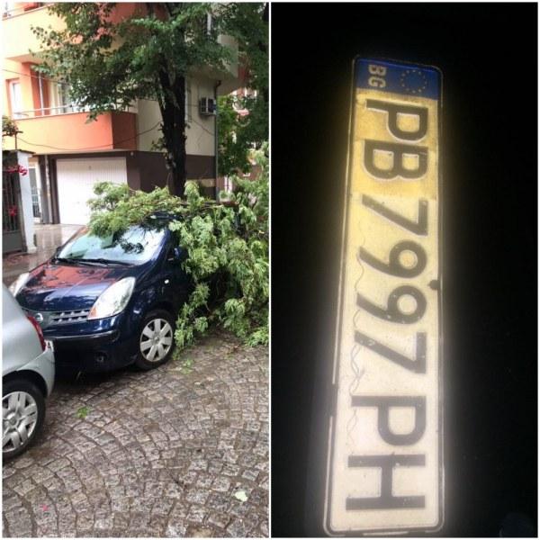 Последиците от бурята - дърво падна върху автомобил, регистрационни номера хвърчат по булевардите