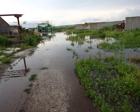 Река Студена преля, стотици декари земеделска земя в Русенско - под вода