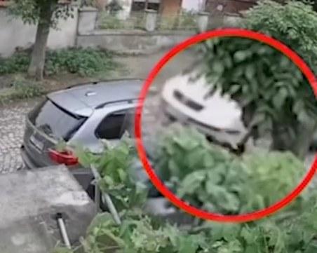 Жестокост! Мъж от Ямбол прегази с колата си кучето на съседите
