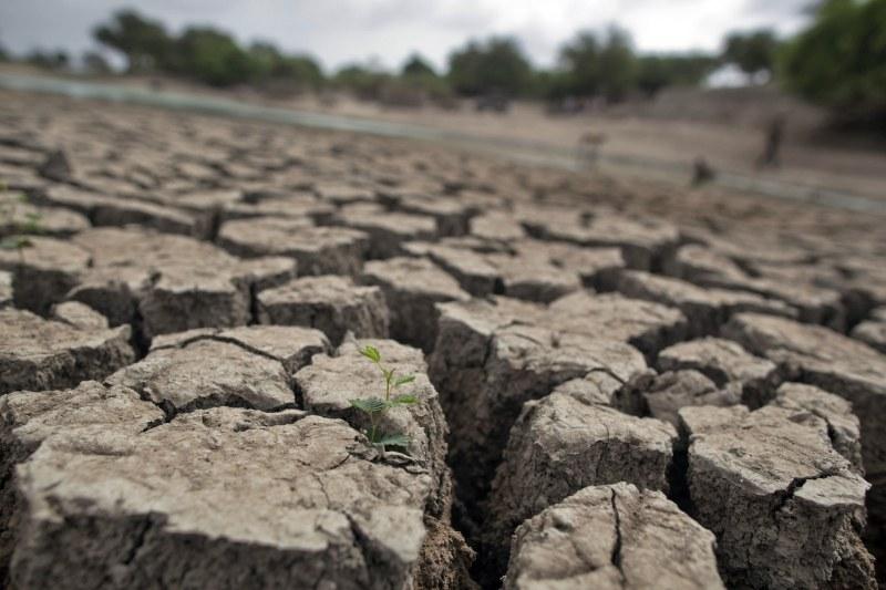 Доказателства за идващия Апокалипсис? Села в Индия – обезлюдени от сушата