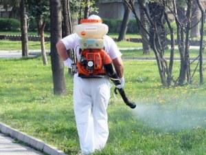 Пръскат срещу комари, бълхи и кърлежи в Пловдив. Вижте графика!
