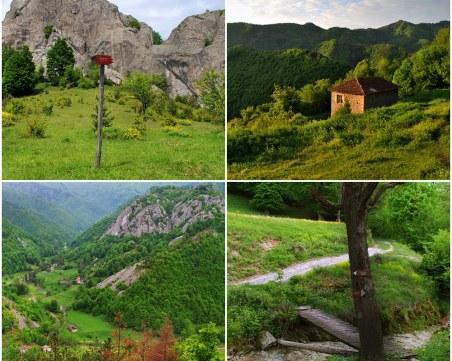 На час от Пловдив - до Виолетина поляна! Там, където баба Виолета си пасяла кравата