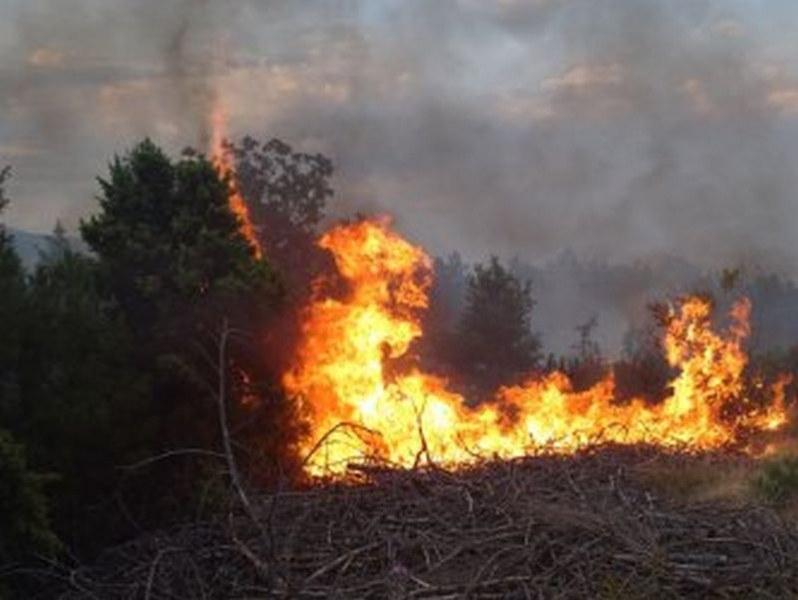 Пожар горя на Халкидики